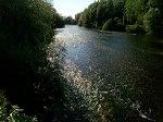 Un paseo por el río Esla